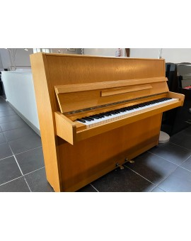 Piano Geyer