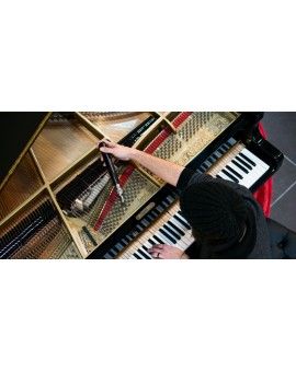 Accord de piano droit ou piano à queue