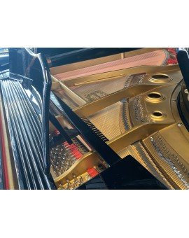 piano à queue young chang