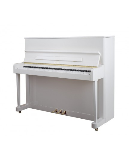 PIANO PETROF P118 P1